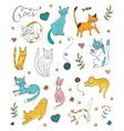 Cute hand drawn cat colorful set vector image