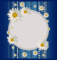 round frame with daisies vector image