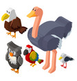 3d design for different types of birds vector image