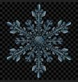 big translucent christmas snowflake vector image