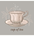 cup of tea on grey background vector image