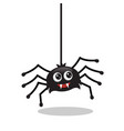 cute spider hanging vector image vector image