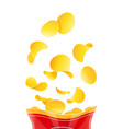 potatoes chips fast-food vector image vector image