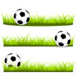 set with soccer balls on a grass vector image vector image