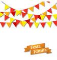 festa jununa background vector image