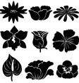 Black flower templates vector image vector image