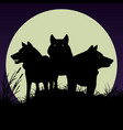 black silhouettes wolves vector image