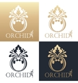 Calligraphic design element Golden logo