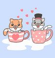 cartoon two cute cat sitting in cup vector image vector image