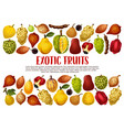 exotic fruits and asian tropical berries vector image vector image