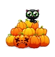 heap halloween pumpkins with a black cat on it vector image