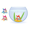 vector aquarium and fishes vector image vector image