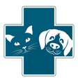 veterinary clinic dog and cat vector image vector image