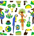 Brazil seamless pattern vector image