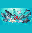 cartoon sea and ocean life template vector image vector image