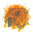 Eagle Art Fire vector image