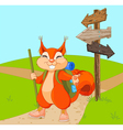 funny squirrel for a walk vector image vector image