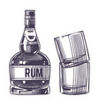hand drawn rum and two glasses vector image