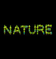 nature lettering letters from trees forest vector image