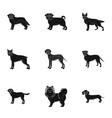 sheepdog dachshund bernard and other web icon vector image vector image
