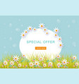 spring banner with flowers green grass and blue vector image