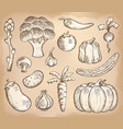 vegetable theme collection 3 vector image vector image