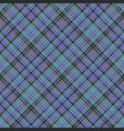 blue colors check plaid seamless pattern vector image vector image