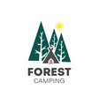 forest camping logo on a white background vector image
