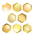 honeycomb cell metallic button vector image