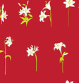 lilies sparse pattern on red vector image vector image