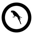 parrot icon black color in circle vector image vector image