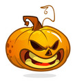 pumpkin talking vector image vector image