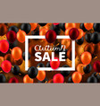 stock autumn sale discounts vector image