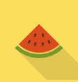 watermelon flat icon with shadow vector image vector image