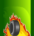 car tires on green background vector image