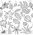 Autumn leaves seamless pattern black and white vector image