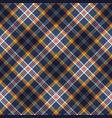 color tartan fabric texture seamless pattern vector image vector image