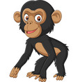 cute bachimpanzee cartoon on white background vector image vector image