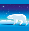 cute polar bear vector image vector image