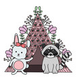 cute raccoon and rabbit with indian tent boho vector image vector image