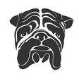 faceBulldog preview vector image