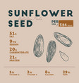 nutrition facts of sunflower seed hand draw vector image vector image