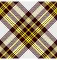 seamless tartan plaid pattern in yellow white vector image