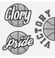set basketball team logos vector image