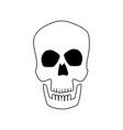 skull human head bone medicine concept vector image vector image