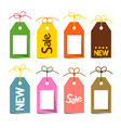 tags with strings labels with strings isolated on vector image vector image