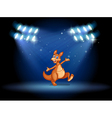 A kangaroo under the spotlights vector image vector image