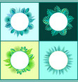 banners templates with tropical plants leaves set vector image vector image