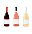 bottles of wine vector image vector image