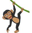 cartoon bachimpanzee hanging in tree branch vector image vector image